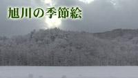 旭川の季節絵